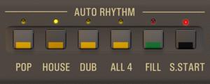 Rhythm Selection Buttons